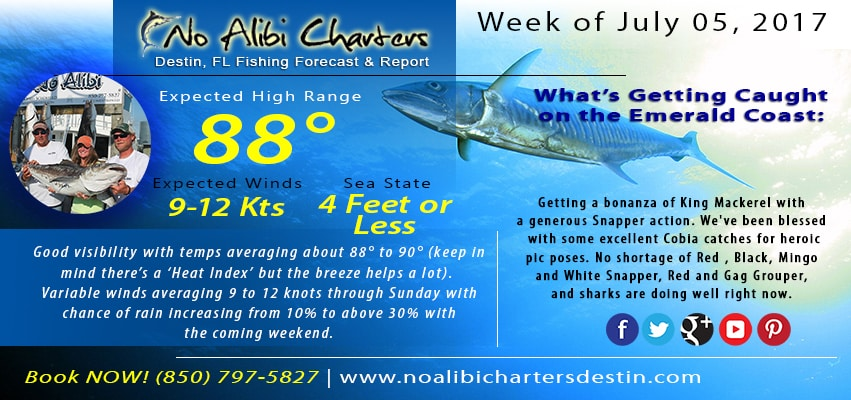 Destin Florida Charter Fishing Forecast and Fishing Report No Alibi Charters July 2017